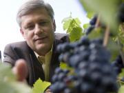 Stephen Harper dans un vignoble de Saint-Eustache