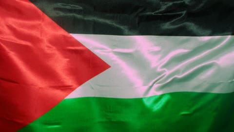 http://img.src.ca/2009/12/18/480x270/091218drapeau_palestinien_8.jpg