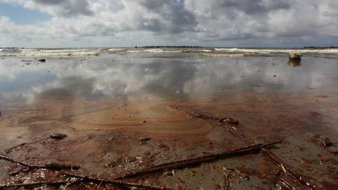 Marée noire: 96% des eaux du golfe du Mexique rouvertes à la pêche