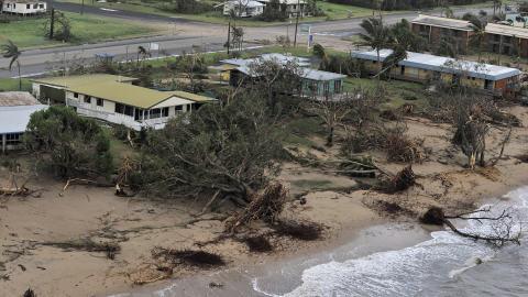 Les vents ont déraciné des centaines d'arbres.
