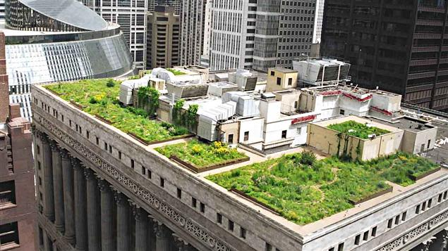 Urbanisme vert