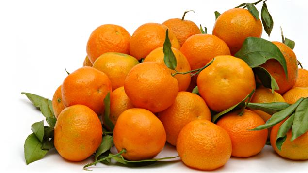 granita clementine granita recipes dishmaps clementine granita recipe ...