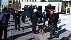 Des policiers à chevaux et des chiens policiers se préparent à la manifestation contre la brutalité policière à Montréal (archives)