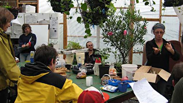 Atelier de propagation des plantes par le groupe pour la reconstruction harmonieuse de l'agriculture