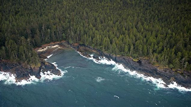 La c�te de Haida Gwaii - Photo : National Parks Project