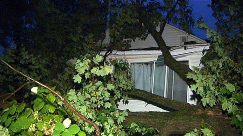 Un arbre déraciné sur une maison à Sainte-Colobam, au Québec