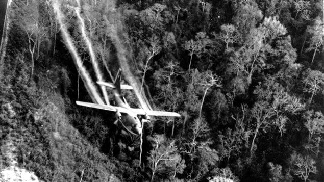 Arrosage de la forêt vietnamienne en 1966 - © CP