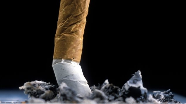 Une cigarette écrasée
