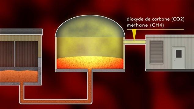 Un digesteur permet de capter les gaz produits par la décomposition.