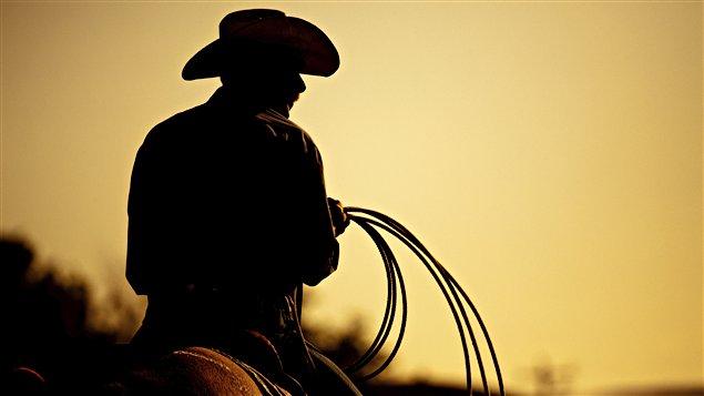 Un cow-boy dans le coucher de soleil / © Sascha Burkard, iStockphoto