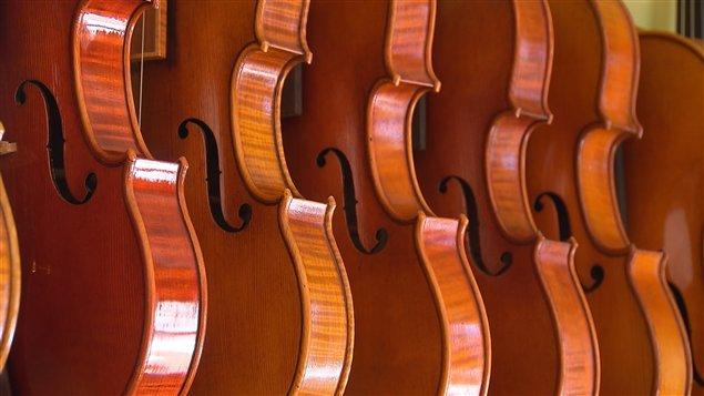 Des violons fait essentiellement de bois québécois.