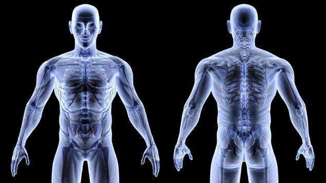 Au moins deux millions de Canadiens sont aux prises avec l'ostéoporose. Une femme sur trois et un homme sur cinq se fractureront un os à cause de l'ostéoporose