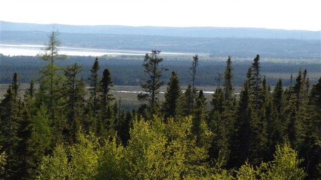 La forêt boréale sur la Côte-Nord du Québec est parsemée de lacs petits et grands creusés par le passage des glaciers en retraite il y a quelques milliers d'années.