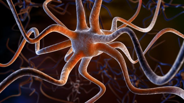 Représantation d'un neurone