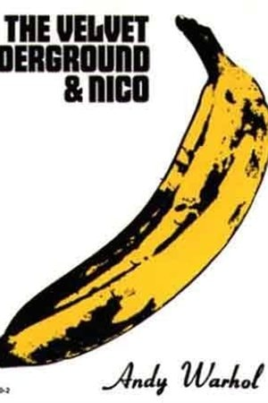Album de The Velvet Underground