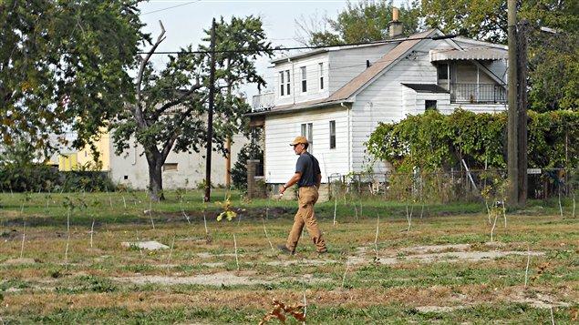 Mike Score, l'homme qui plantait des arbres