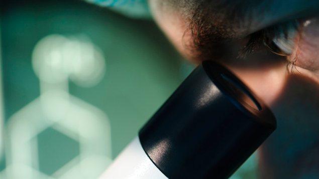 Un homme regarde dans un microscope