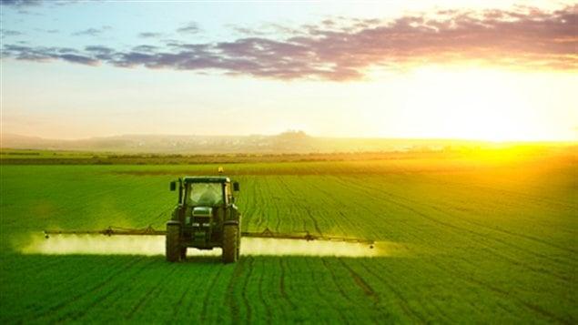 Épandage de pesticides dans un champ de la province du Québec.