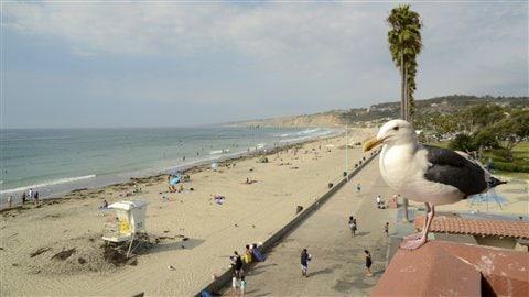 San Diego Californie Archives Pour Le Plaisir Radio
