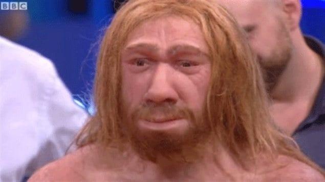 http://img.src.ca/2012/10/24/635x357/121024_q95c6_neandertal-reconstitution_sn635.jpg