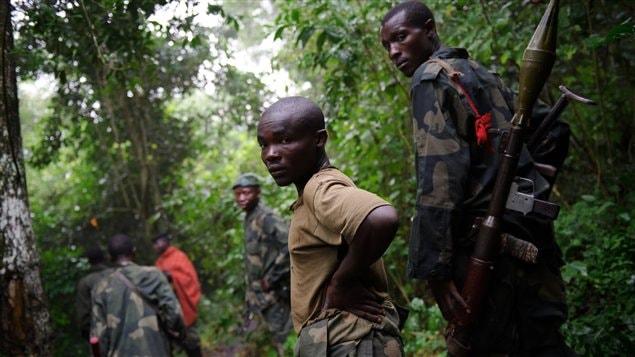Des rebelles du M23 dans la jungle du Nord-Kivu, en République démocratique du Congo (juillet 2012)