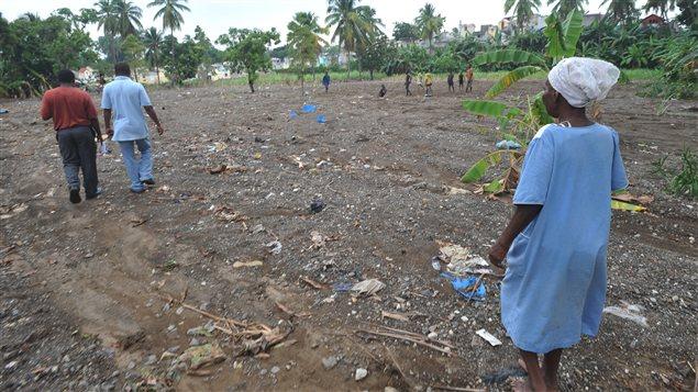 Un champ dévasté après le passage de Sandy