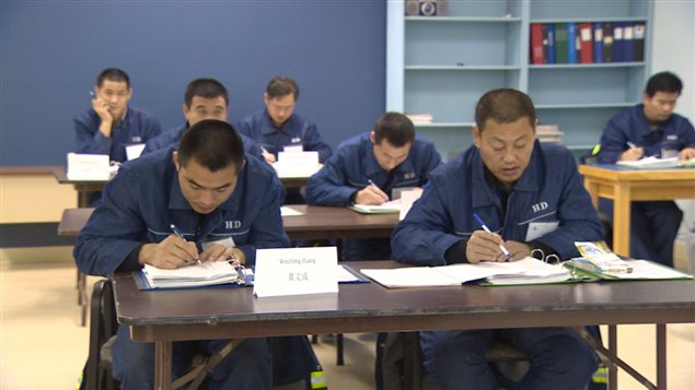 Mineurs chinois Tumbler Ridge
