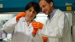 Le VIH pour lutter contre le cancer