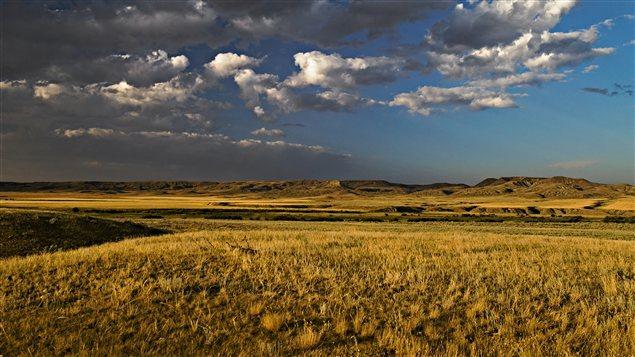 Paysage de Saskatchewan / © 4loops, iStockphoto