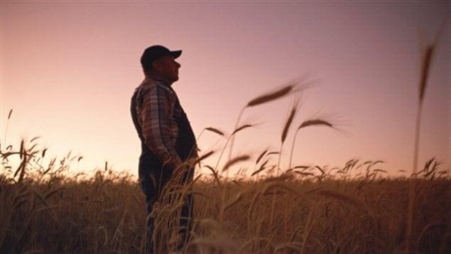 Une première maison de répit pour les agriculteurs en détresse