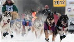 La meute de chiens de Page Drobny mène le bal au départ de la course internationale de traîneau à chiens Yukon Quest, le 4 février 2012 à Fairbanks en Alaska.