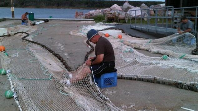 Filets de pêcheurs