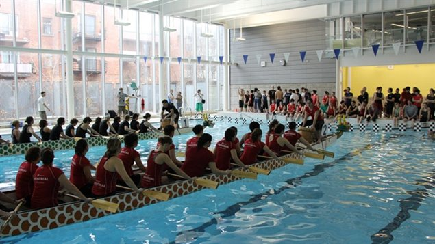 Enqu te sur l 39 association sportive et communautaire du for Club piscine rive sud montreal