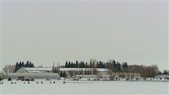 Une ferme de la région agricole Horse Hill dans le nord-est d'Edmonton