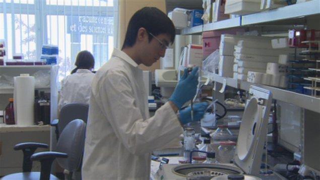 Recherche dans un laboratoire