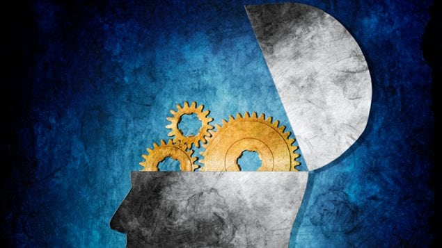Mécanismes cérébraux