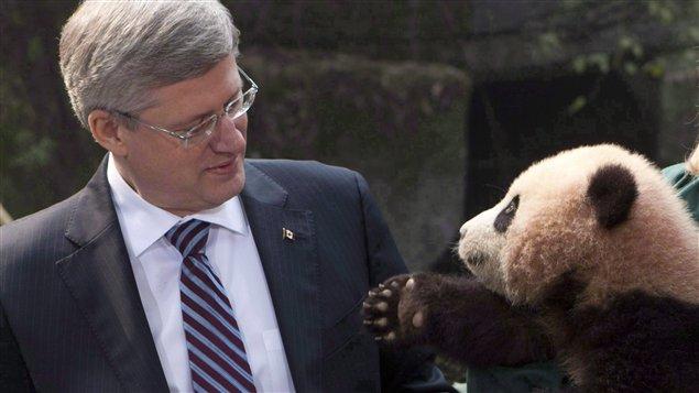 Un panda salue le premier ministre canadien Stephen Harper
