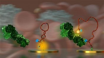 Représentation artistique du projet (molécules détectées par le biocapteur) / crédit Université de Montréal