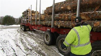 Les ententes du N.-B. avec les forestières sont rendues publiques - ICI.Radio-Canada.ca