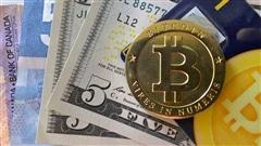 Le bitcoin : une monnaie virtuelle qui vaut cher