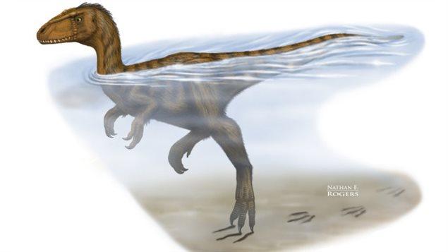 Représentation d'un dinosaure dans l'eau