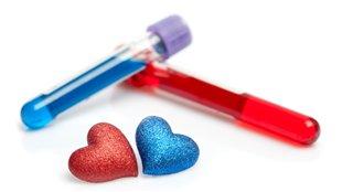 L'amour, c'est chimique!