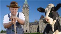 Crise de la vache folle : 10 ans après