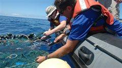 Des chercheurs documentent le phénomène d'océan de plastique