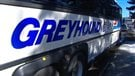 Blue River : excès de vitesse d'un autocar Greyhound