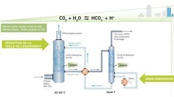 Le procédé utilisant l'anhydrase carbonique