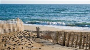 Les Outer Banks (OBX)