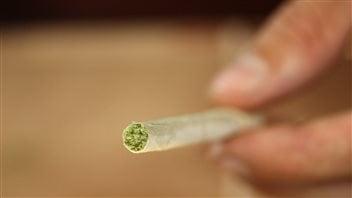Ottawa change les règles pour l'approvisionnement de marijuana à usage thérapeutique