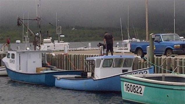 Bateaux de pêche au homard