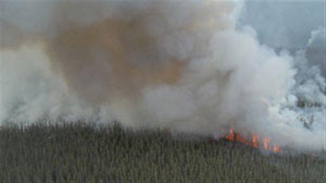 Feu de forêt près de Mayo au Yukon